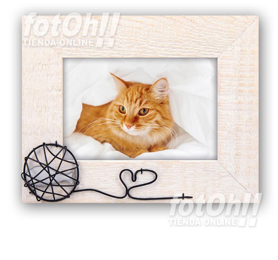 fotoh-fotografia_tienda-en-oliva_marcos-de-mascotas-1