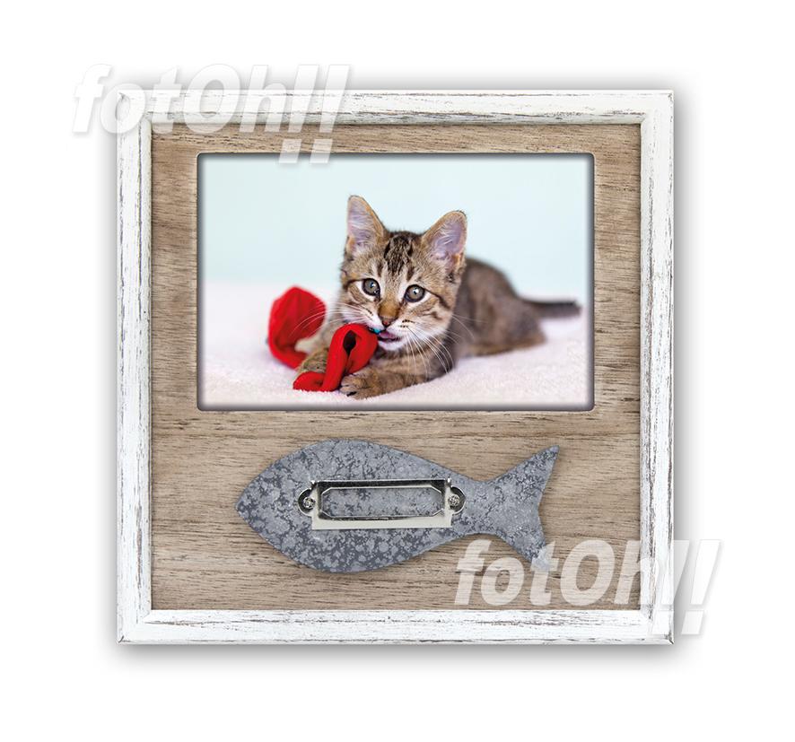 fotoh-fotografia_tienda-en-oliva_marcos-de-mascotas-3
