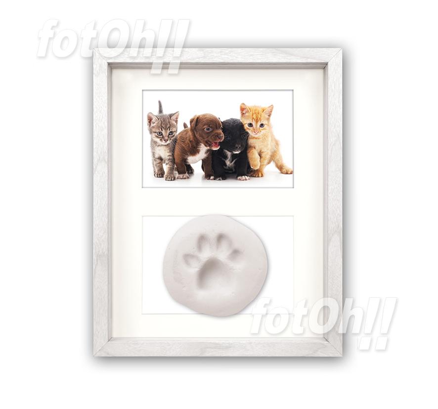 fotoh-fotografia_tienda-en-oliva_marcos-de-mascotas-5