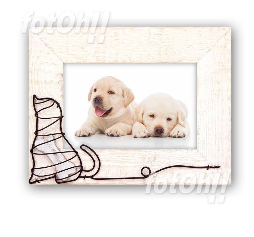 fotoh-fotografia_tienda-en-oliva_marcos-de-mascotas-6