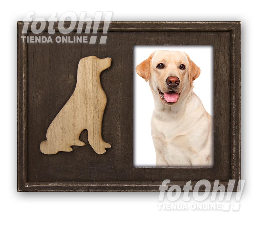 fotoh-fotografia_tienda-en-oliva_marcos-de-mascotas-7